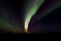 Streak of Aurora